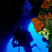 Become an Advanced Open Water Diver right away