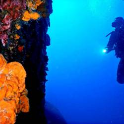 14 dives for certified divers. Scuba diving holidays package. Dive vacations to Kalymnos island, Aegean, Greece.
