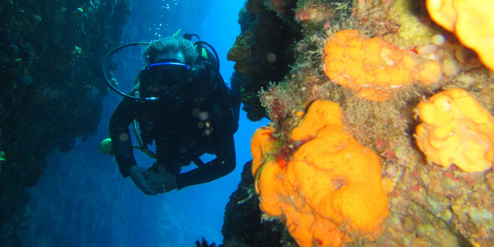 Join us on the best dives in Kalymnos